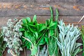 Sandwich, lonchas, fundidos, porciones